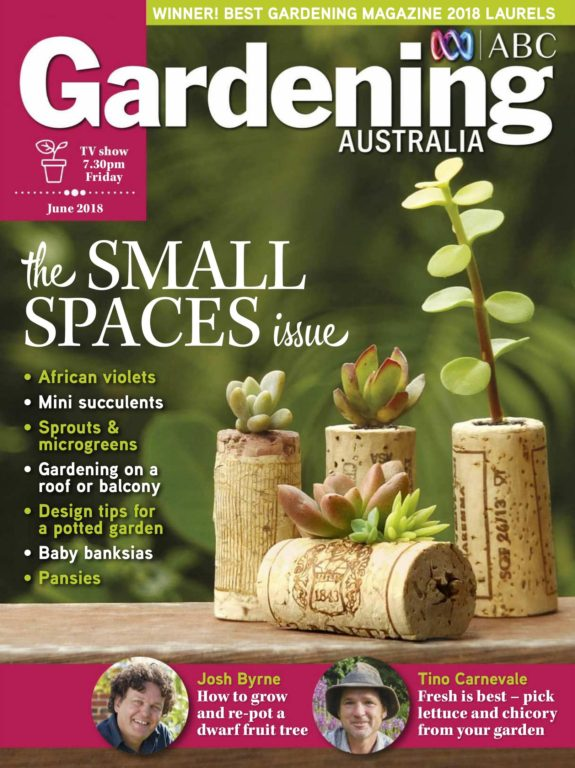 garden to a use tip gardening photo id reference magazines finegardening seedlings